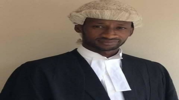 lawyer jallow