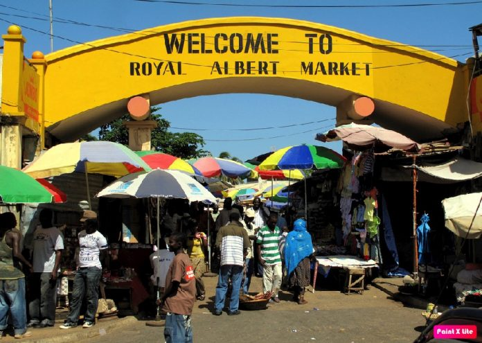 albert market